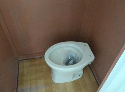 新しく作ったトイレに便器を置いてみた